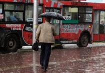 И нет просвета от дождей: какая погода будет в Новосибирске 27 августа