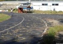 Саратовские стадионы на самоизоляции заросли травой