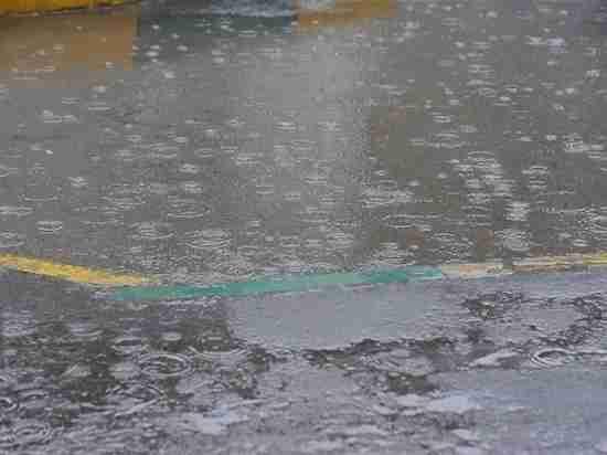 Дожди и грозы пришли в Волгоградскую область на выходные