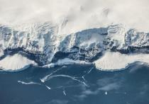 Ученые узнали, насколько холодным был ледниковый период