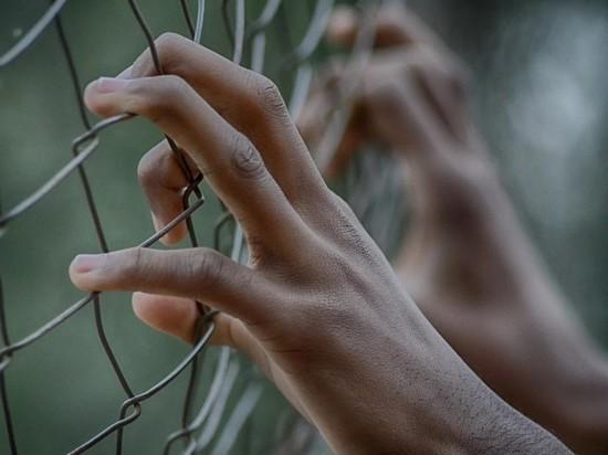 Новозеландцы хотят избавиться от приговоренного террориста, а Брейвик недоволен условиями содержания