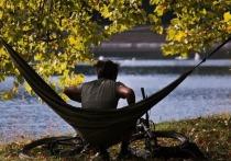 Научный руководитель Гидрометцентра РФ Роман Вильфанд опроверг информацию о том, что «бабье лето» в стране наступит 14 сентября