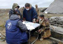 На Ямале досрочно проголосовали больше 8 тысяч человек