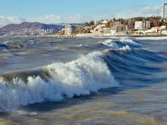 """Конфликт произошел на пляже """"Коралл"""" в Адлерском районе города"""