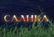 Площадка «Шкетан сад» в Йошкар-Оле покажет фильмы Василия Домрачева