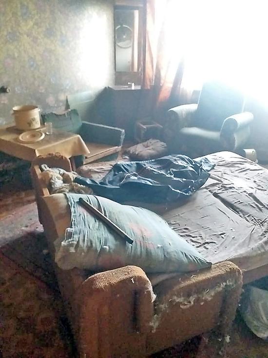 В Новосибирске  в течение недели пять кошек жили  с умершим хозяином
