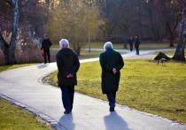 Родственница – сельский фельдшер – проговорилась как-то, на кустовом семинаре в Хоринске приехавшая из города медицинская гранд-дама объявила примерно следующее: пожилых и старых «лечить не надо»