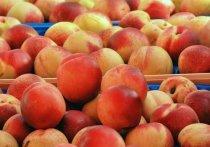 Персики стали причиной сальмонеллеза