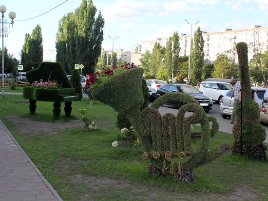 В Белгородской области зазвучала «Симфония цветов»