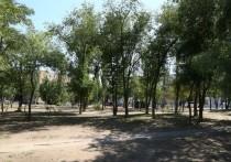 В благоустраиваемом парке Татищева появится новая большая спортивная площадка