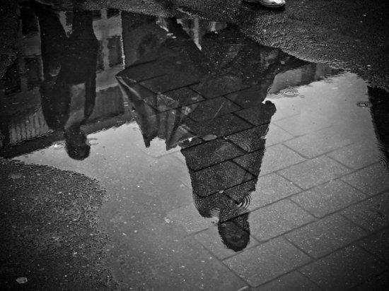 Небольшой дождь и +22 градуса ожидается в Псковской области 5 сентября