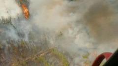 Тушение масштабных лесных пожаров в Ростовской области показали с высоты