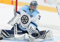 Хоккей: «Сибирь» - «Торпедо» где и во сколько смотреть трансляцию