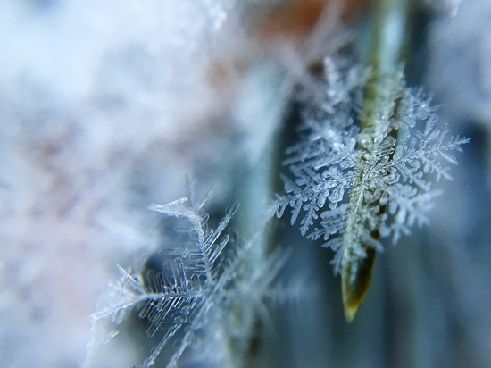 В Удмуртии возможны заморозки на почве
