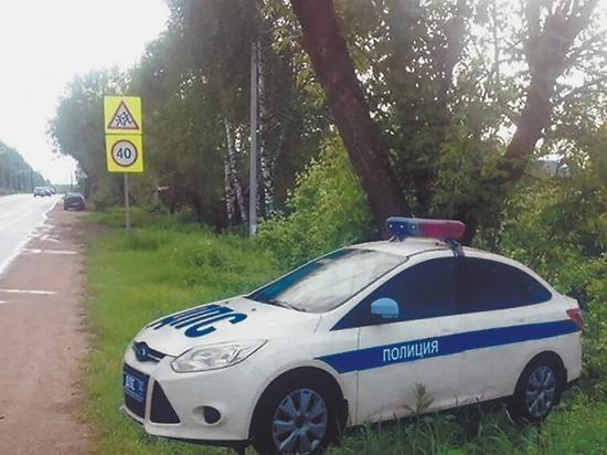 На трассах Подмосковья поставят 750 картонных полицейских