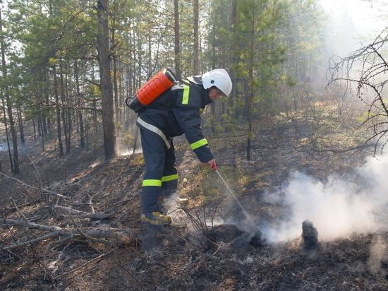 дизайн вдоль фото лесного пожара в россии сохранились ныне верующие