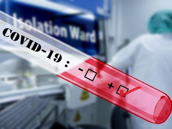 В десяти классах Петербурга выявлен коронавирус