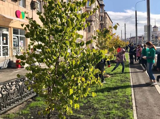 Мэр Новокузнецка пригласил жителей города на посадку молодых деревьев