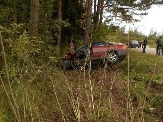27-летний парень на «Ауди» погиб в ДТП под Пушкинскими Горами