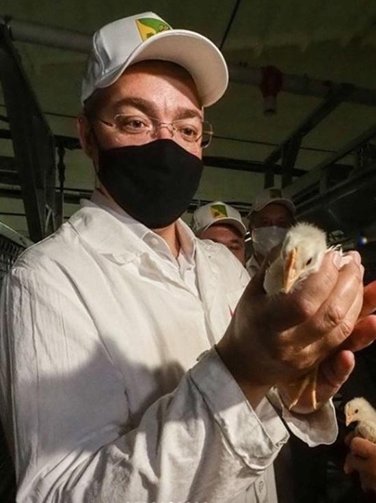 В Буденновском районе смогут выпускать до 200 млн яиц в год