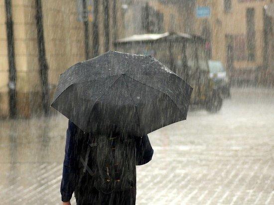 МЧС предупредило петербуржцев о сильном шторме