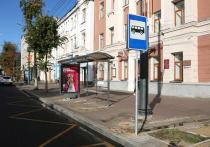 В Воронеже завершается обустройство новых остановок «Театр кукол» и «Петровский сквер»