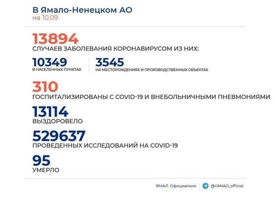 На Ямале COVID-19 диагностировали еще у 54 человек