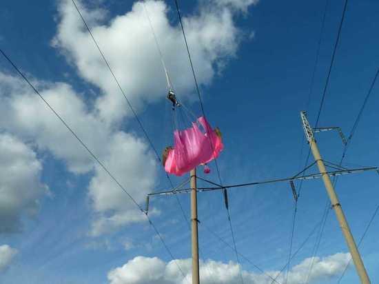 Кировэнерго оповещает:парашютный спорт опасен рядом с энергообъектами