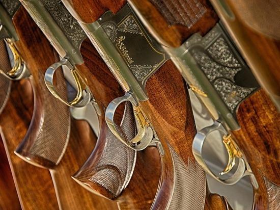 46 единиц оружие и 76 боеприпасов изъяли у жителей Псковской области