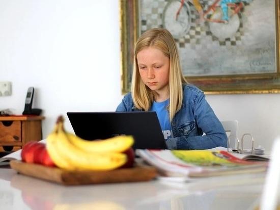 16 классов в Волгоградской области ушли на онлайн-обучение