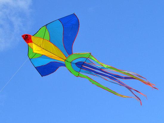 Фестиваль воздушных змеев пройдет в Железноводске в День края