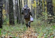 «Зрелое» лето и ранняя осень – пора заблуждений для россиян