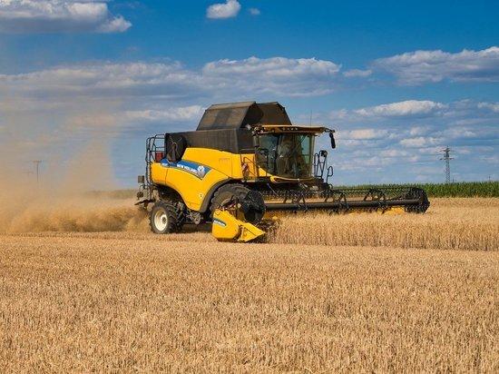 В Марий Эл повысилась урожайность зерна