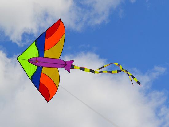 «Лети легко»: фестиваль воздушных змеев в Железноводске