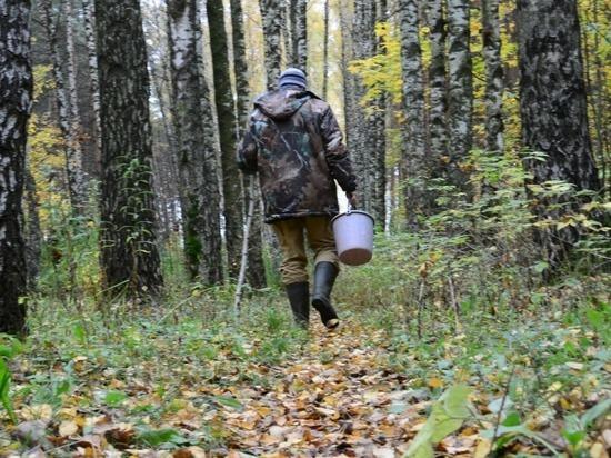 Сторож охотхозяйства за один поход в лес терялся дважды