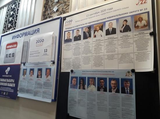 В Калужской области явка на выборах составила 21 %