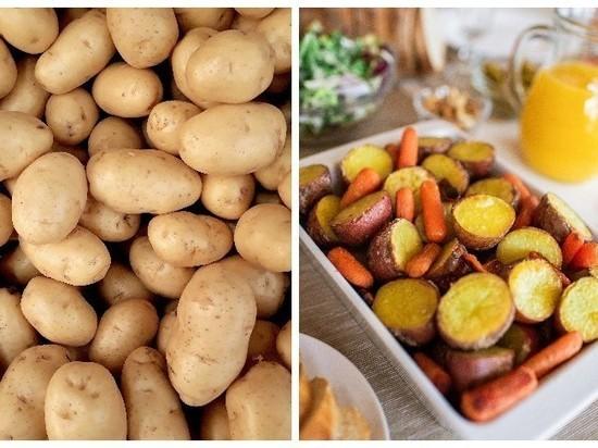 Россиян предупредили о резком росте цен на картофель осенью