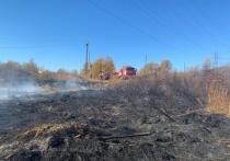 Лесной пожар в Магаданской области чуть не спалил поселок