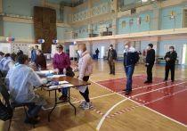 Новая Болотная на Ямале: досье «гастролеров» на выборах