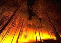 Осипов: Пожары должны стать «бедой по зарплате» в «Забайкаллесхозе»
