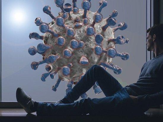 Кыш, коронавирус: «МК в Пскове» сравнил апрельские ковид-прогнозы экстрасенса, ясновидящего и парапсихолога с реальностью