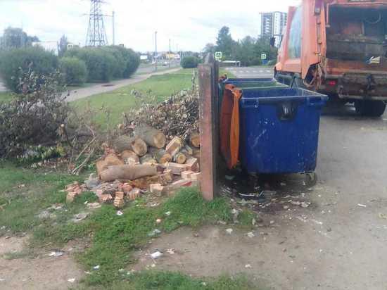 Неизвестные сломали мусорный бак на Коммунальной, выбросив в него дерево