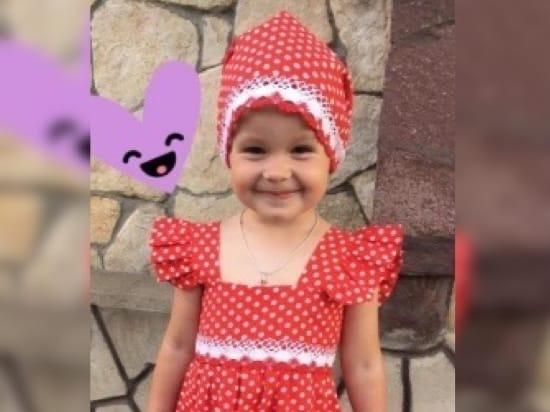 Рязанцев просят помочь найти пропавшую трехлетнюю девочку