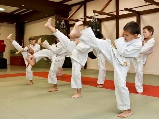 В спортшколу Ханымея приехали тренеры по карате и лыжным гонкам