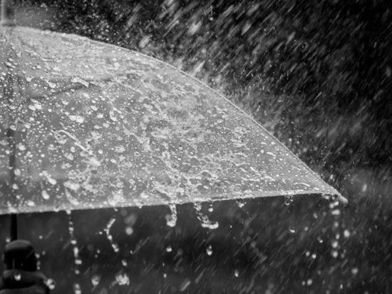 В Омскую область придет сильный шторм с грозой