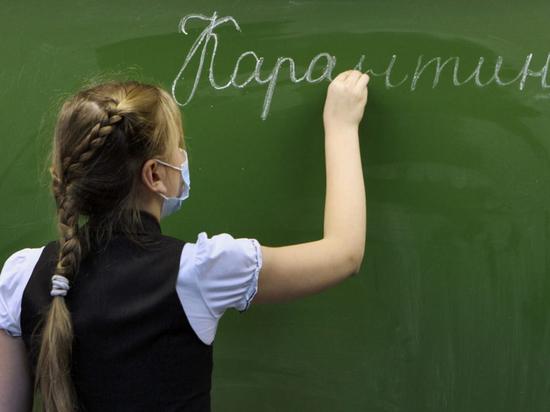 За сутки в Ярославской области закрылось 12 классов