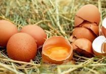 По словам врача-нефролога Анны Коробкиной, специалисты продолжают спорить на тему о допустимой для человека норме яиц в неделю