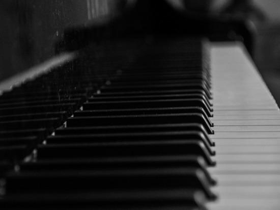 В хабаровском музее дети погрызли рояль