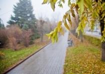 Серьезное похолодание и дожди придут в Волгоград к концу недели