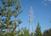 В Ноябрьске за линиями электропередач просят следить горожан
